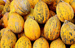 Ripe watermelons for sale. At street market Royalty Free Stock Images