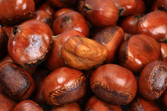 Ripe Wet Chestnuts Royalty Free Stock Photos