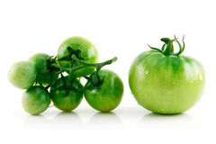 Ripe Wet Green Tomatoes Isolated on White. Background Royalty Free Stock Images