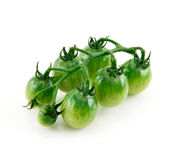 Ripe Wet Green Tomatoes Isolated on White Stock Photography