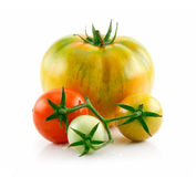 Ripe Wet Red and Green Tomatoes Isolated on White Royalty Free Stock Photos