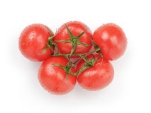 Ripe wet red tomatoes with branch from above on. White background Royalty Free Stock Images