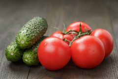 Ripe wet tomatoes on vine and cucumbers on wood Royalty Free Stock Image