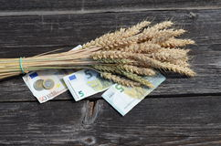 Ripe wheat ears bunch and euro money banknote Stock Images