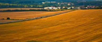 Ripe wheat field with road Stock Images