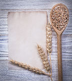Ripe wheat rye ears corn wooden spoon clean vintage paper sheet Royalty Free Stock Images