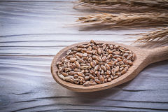 Ripe wheat and rye ears wooden spoon corn crop on wood board Stock Images