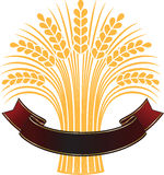 Ripe wheat sheaf with elegant banner. Stock Photos