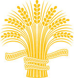 Ripe wheat sheaf. Golden ripe wheat sheaf. Vector decorative element, brand icon or logo template Stock Photos