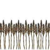 Ripe Wheat Spikelets Endless Brush. Border Ribbon of Malt with Space for Text. Farm Harvest Template. Realistic Hand. Drawn Illustration. Savoyar Doodle Style Stock Images