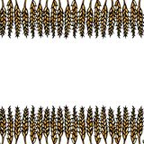 Ripe Wheat Spikelets Endless Brush. Border Ribbon of Malt with Space for Text. Farm Harvest Template. Realistic Hand Drawn Illustr. Ation. Savoyar Doodle Style Royalty Free Stock Images