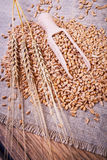 Ripe wheat and a wooden scoop Royalty Free Stock Image