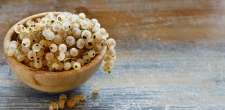 Ripe white currant berries. In a bowl close up Stock Photography