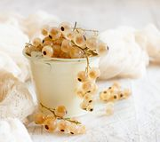 Ripe white currant berries. In a bucket close up Royalty Free Stock Photos