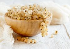 Ripe white currant berries. In a bowl close up Royalty Free Stock Image