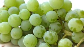 Ripe white grape Stock Image
