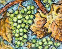 Ripe White Grape Illustration Painting. Painting of organic ripe white grapes in a vineyard Stock Photos