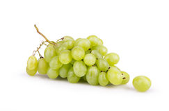 Ripe white grapes with dew Stock Image
