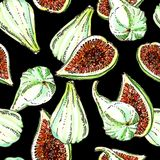 Ripe white green adriatic figs watercolor and ink seamless pattern on black background. Whole and half cut stock illustration