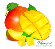 Ripe whole grapefruit with leaves. Stock Images