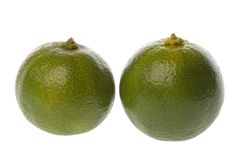 Ripe whole lime fruits Stock Image