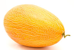 Ripe whole melon isolated Royalty Free Stock Images