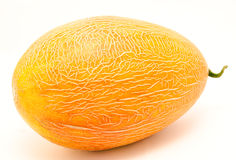 Ripe whole melon  Stock Image