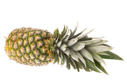 Ripe whole pineapple isolated Stock Images