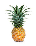 Ripe whole pineapple Stock Photo