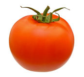 Ripe whole tomato Royalty Free Stock Photography