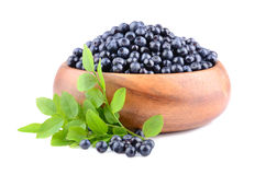 Ripe whortleberries Stock Photography