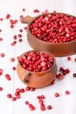 Ripe wild cranberries stock photo