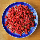 Ripe wild strawberries Royalty Free Stock Photography
