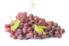 Ripe,wonderful grape on a white Stock Image