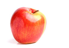 Ripe wry apple isolated. Royalty Free Stock Images