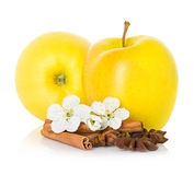 Ripe yellow apple with cinnamon sticks, anise star and apple flowers Royalty Free Stock Photos