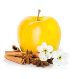 Ripe yellow apple with cinnamon sticks, anise star and apple flowers Stock Images