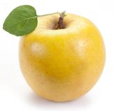 Ripe yellow apple with one leaf. Stock Photo