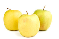 Ripe yellow apples on a white background. Fresh ripe juicy yellow apples on a white background Stock Image
