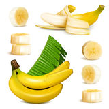 Ripe yellow banana. S, slices and leaves. vector illustrations Royalty Free Stock Image