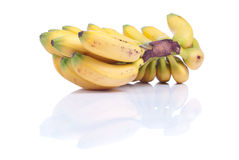 Ripe yellow bananas baby on white isolated background with refle Royalty Free Stock Photo