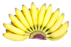 Ripe yellow bananas baby on white isolated background with shado Stock Photo