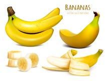 Ripe yellow bananas vector illustration Stock Images