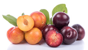 Ripe yellow and cherry plums Stock Photo
