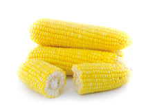 Ripe yellow corn Stock Images