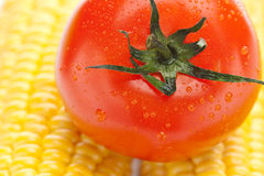 Ripe yellow corn and tomato Royalty Free Stock Photo