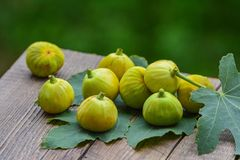 Ripe yellow fig Royalty Free Stock Photography