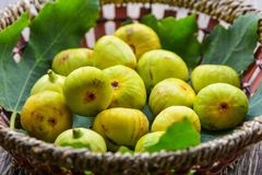 Ripe yellow figs Stock Photography