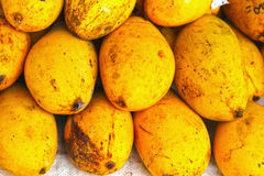 Ripe yellow mango fruit in the market. Stock Images