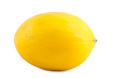 Ripe yellow melon Royalty Free Stock Images